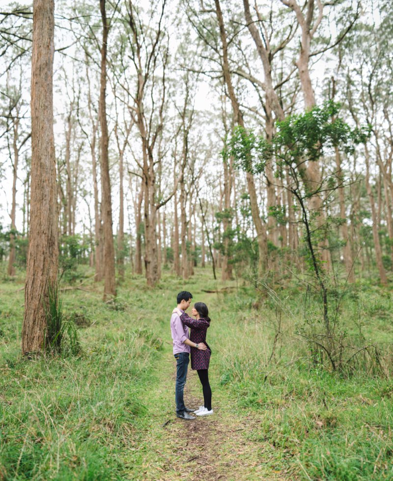 Southern Highlands Engagement