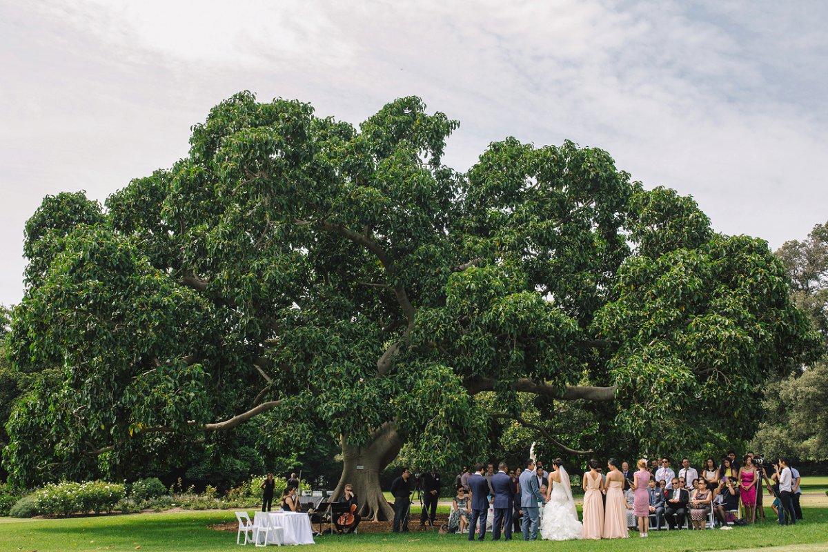 Sydney Cambodian Wedding