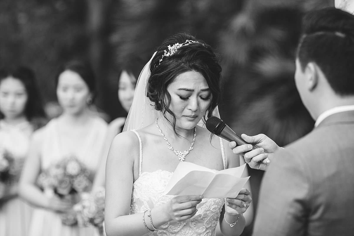 2017 Wedding Photography Highlights