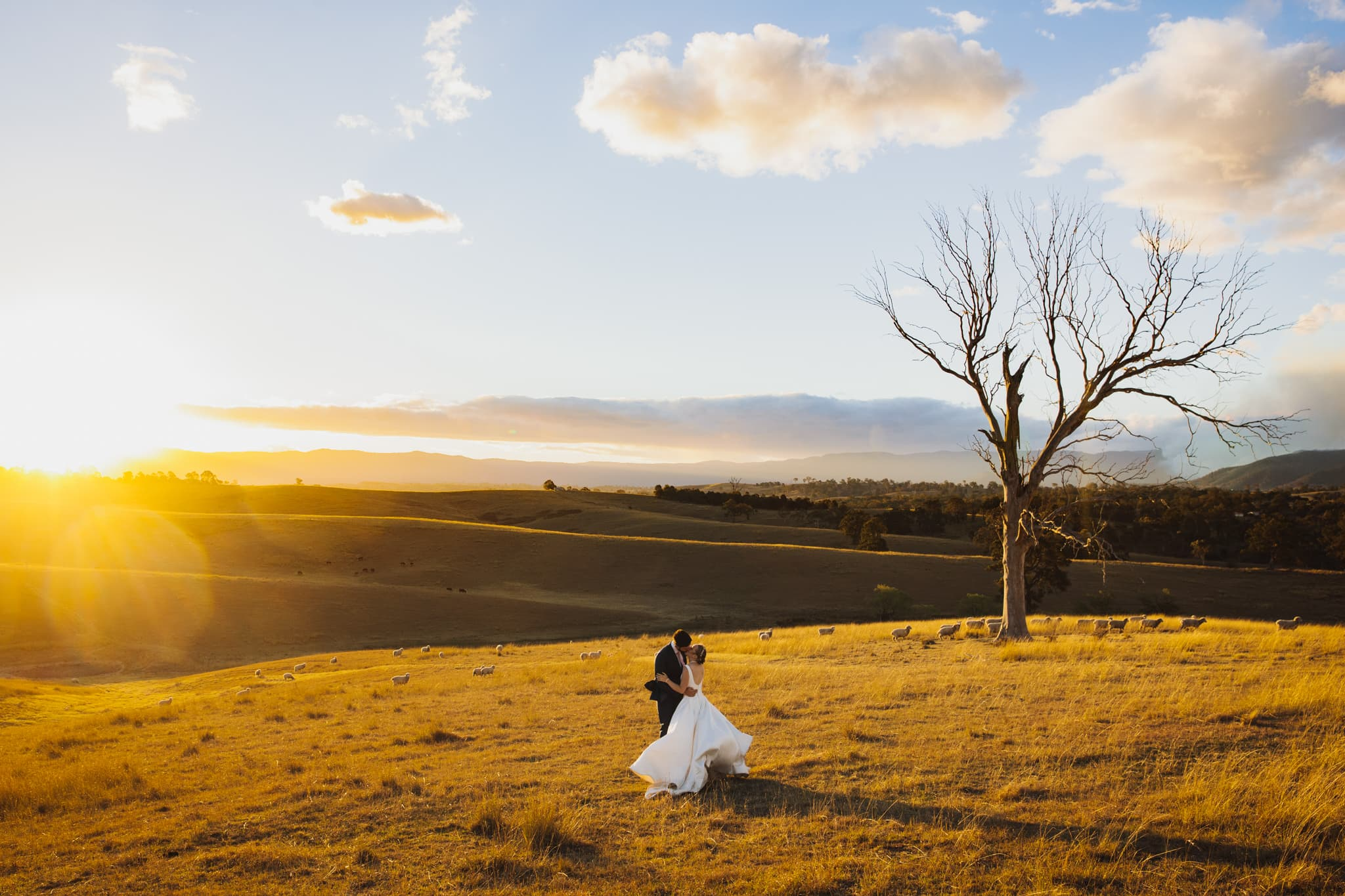Bride and Groom in a paddock at sunset at a Country NSW Wedding Venue