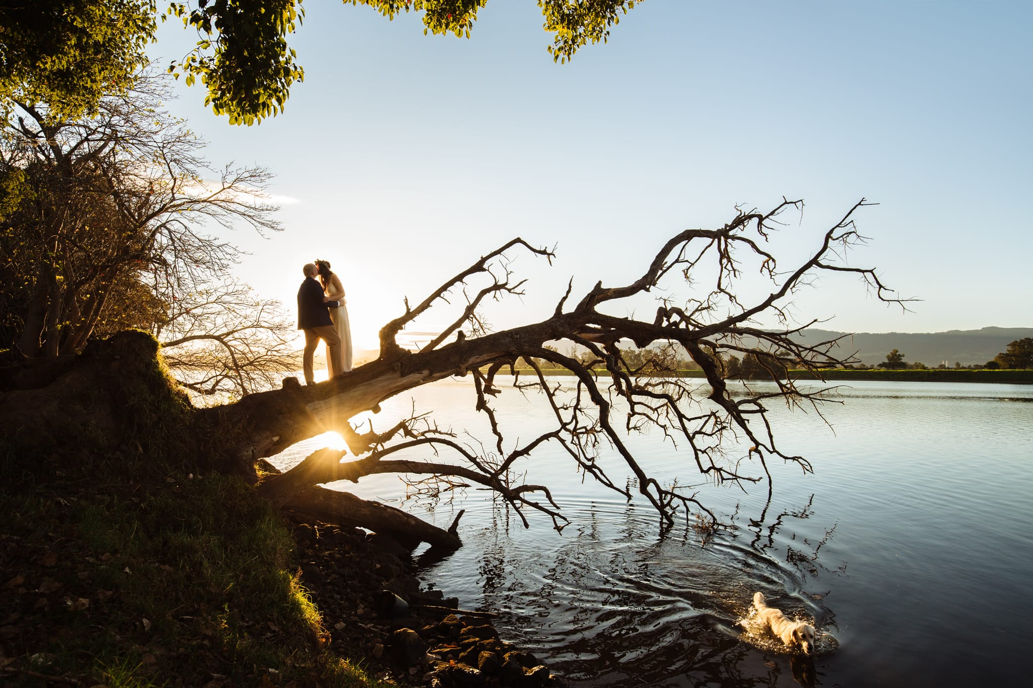 Bride and Groom at sunset at the NSW South Coast wedding venue named Driftwood Shed