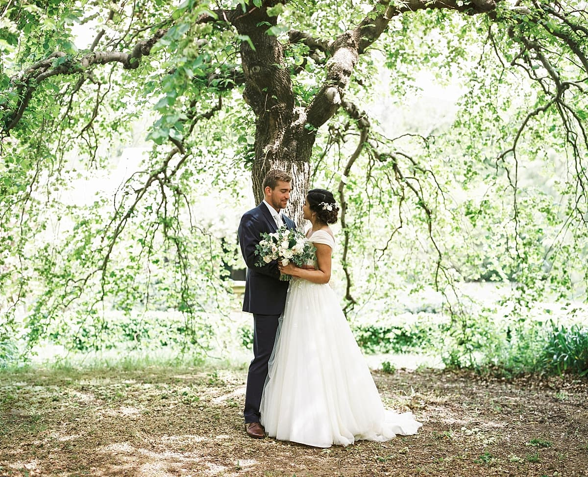 Bride and Groom under a tree at Montrose Berry Farm