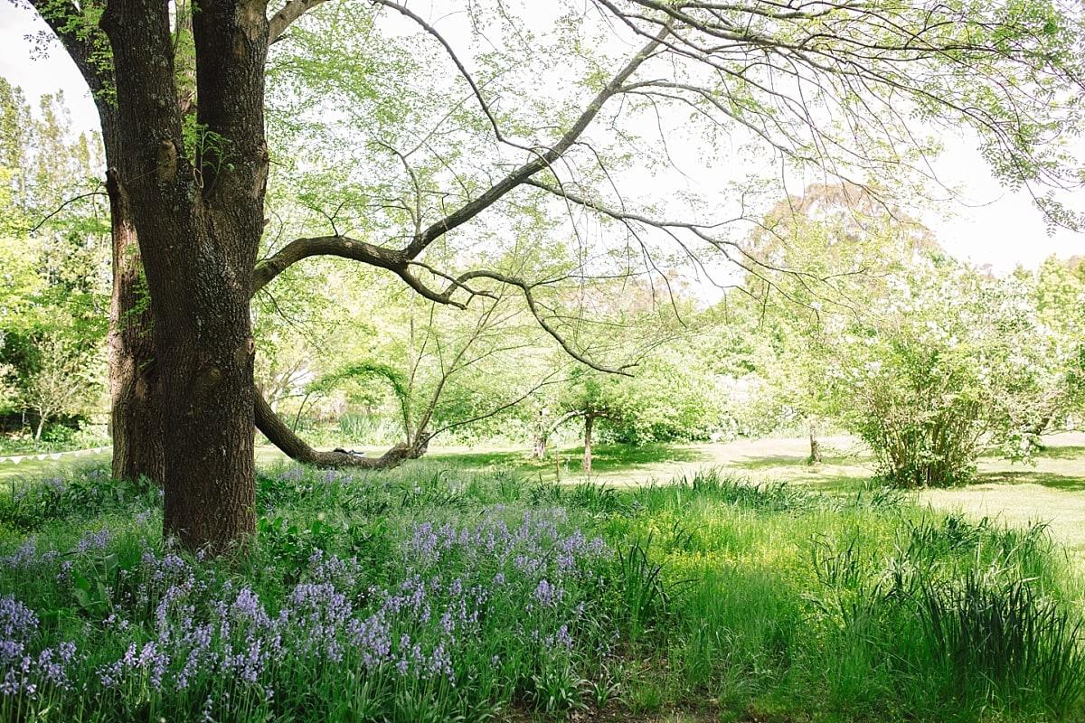 The gardens at Montrose Berry Farm